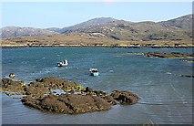 NF7828 : Loch Aineort by Anne Burgess