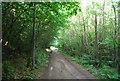 TQ6051 : Bridleway, Dene Park by N Chadwick