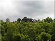 SE2065 : Brimham Rocks from the west by Michael Steele