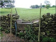 SE2065 : Drinking Trough in a field wall by Michael Steele
