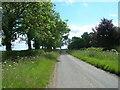 SE9954 : Minor Road Towards Hutton Cranswick by JThomas