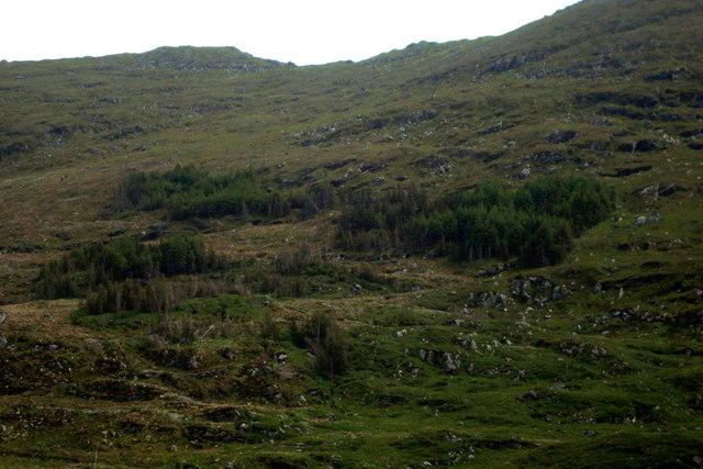 Hillside at Crownarad