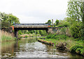 SO9466 : Bridge 43, Worcester and Birmingham Canal by Pierre Terre