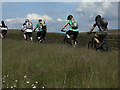 SD9811 : Single file on the Pennine Bridleway by michael ely