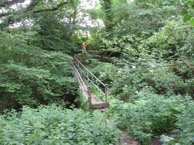 Footbridge across gorge