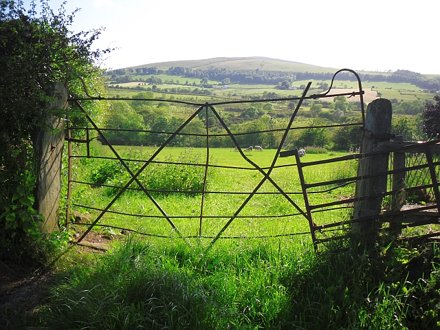 Field with a quirky gate