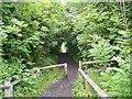 NZ2242 : Deerness Valley Railway Path near Ushaw Moor by Peter Johnson