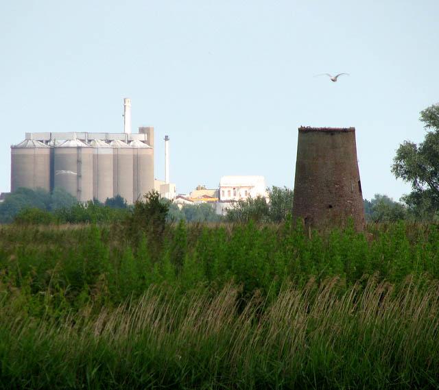 View towards Buckenham Ferry drainage mill