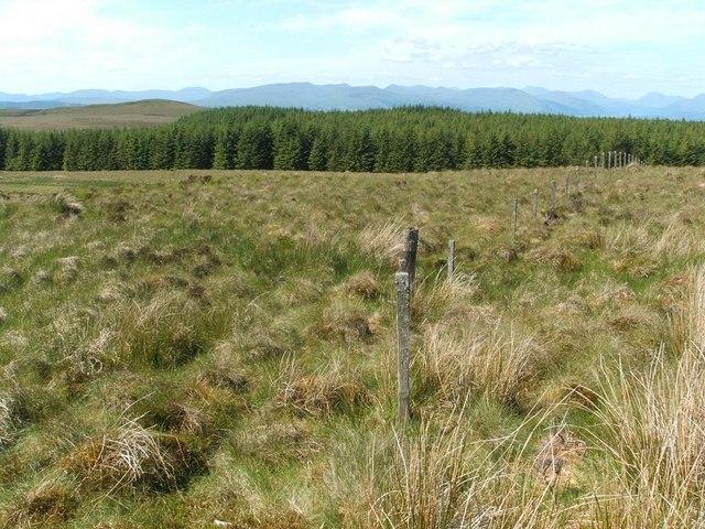 Fence crossing Meikle Saughen Brae