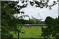 SJ7971 : The small dish at Jodrell Bank by Ian Greig