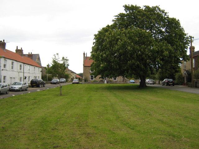 Summerhouse Village Green
