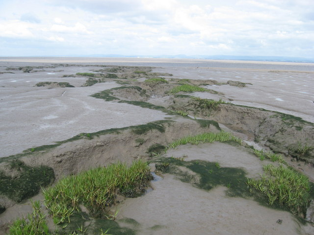 Mudflats with drainage channel