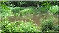 SJ8064 : Hidden Pond by Jonathan Kington