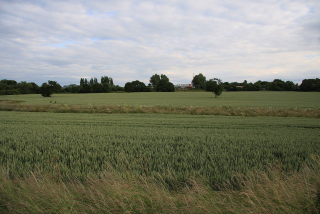 Fields between Hutton and Mountnessing