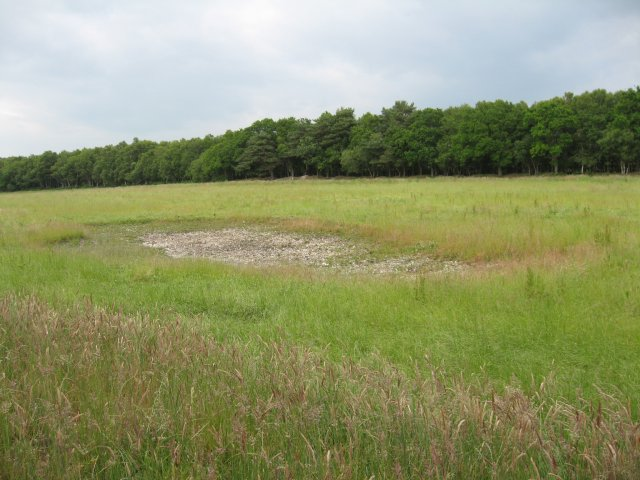 Small scrape on Reserve