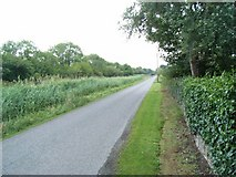 N9527 : Grand Canal Towpath at Ardclough, Co. Kildare by JP
