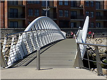 J3731 : The Shimna Footbridge at Newcastle by HENRY CLARK