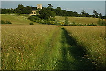 SO8845 : Footpath to Croome Church by Philip Halling