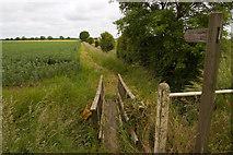 SE7842 : Footpath to Bielby by Paul Harrop
