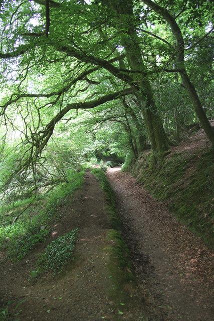 Footpath south of Helford