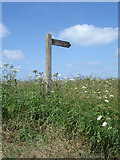 TA0114 : The Way to Barton Road by David Wright