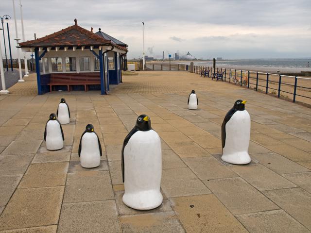 Penguin sculpture, Coatham