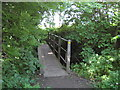 NZ2314 : Footbridge over Ulnaby Beck by peter robinson