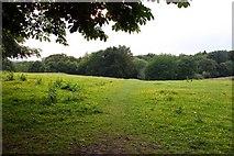 SP4802 : Footpath across Matthew Arnold Field by Steve Daniels