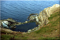 TA1281 : Rockpool, North Cliff, Filey Brigg by Peter Bond