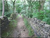 SE1312 : Footpath in Mag Wood by Chris Wimbush