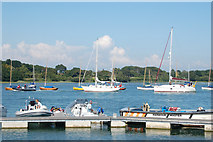 SZ3394 : View across Lymington River by Andy F