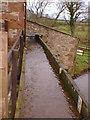 SD0997 : Muncaster Mill - Pen Trough by David Priestley