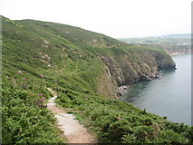 SH2989 : The Anglesey Coastal Path above Porth Swtan/Church Bay by Eric Jones