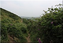SH2989 : The coastal path south towards Porth Swtan by Eric Jones