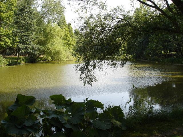 The Fishpond, Holbrook Gardens