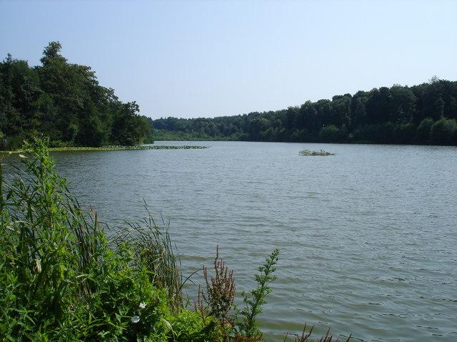The Lake, Holbrook Gardens