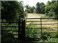 SP9676 : Follow the arrow, Nene Way, Woodford by Michael Trolove