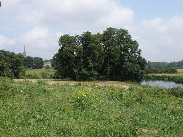 Riverside view looking towards Woodford