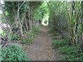 SU7889 : Footpath heading up towards Hatchet Wood by Shaun Ferguson