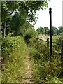TQ4644 : Footpath Near Hever, Kent by Peter Trimming