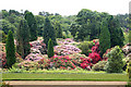 NZ0878 : The formal gardens at Belsay Hall by Andy F