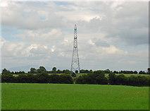 S8169 : Field with pylon near Rathoe, Co. Carlow by Dylan Moore