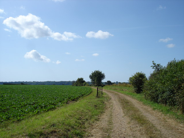 Farm track near Beaumont Hall
