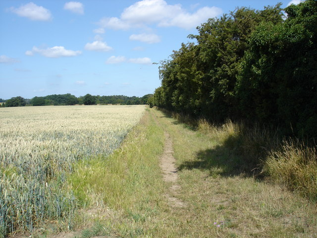 Bridleway to Bylam Farm