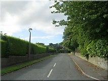 SE1421 : Toothill Avenue - Lyndhurst Grove Road by Betty Longbottom