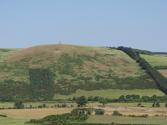 Looking across the Glen to Lanton Hill
