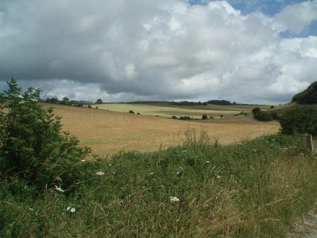 Farmland near Warningcamp Hill