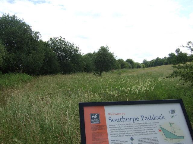 Southorpe Paddock