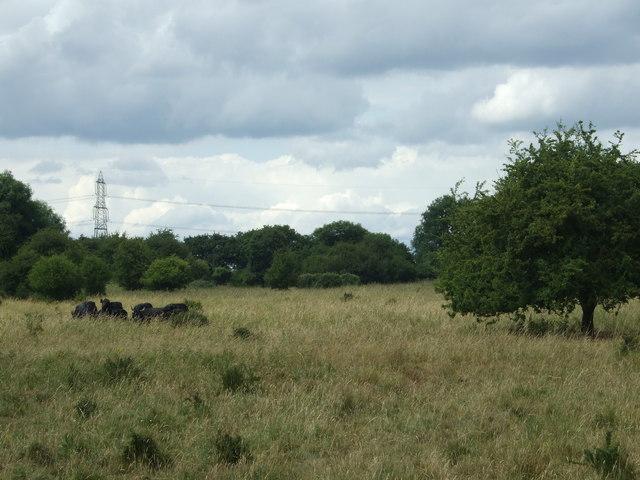 Middle Heath, Castor Hanglands