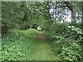 TF1101 : Castor Hanglands by geojoc